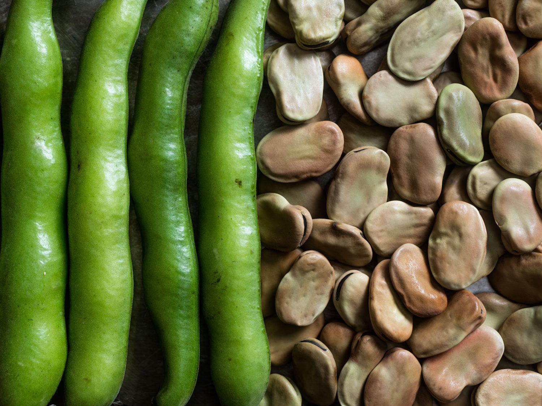 картинки овоща бобы работу поджелудочной
